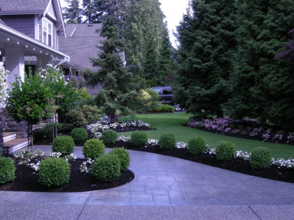 front yard landscaping make over