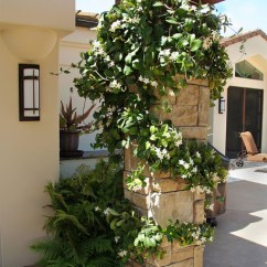Office Star Chairs Retro Metal Patio Fragrant Stephanotis - Mediterranean Landscape Santa Barbara By Donna Lynn ...