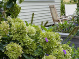 traditional-landscape A New England Front Yard Designed for Relaxation and Resilience (9 photos)