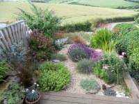 Small South-Facing Garden - Coastal - Garden - Other