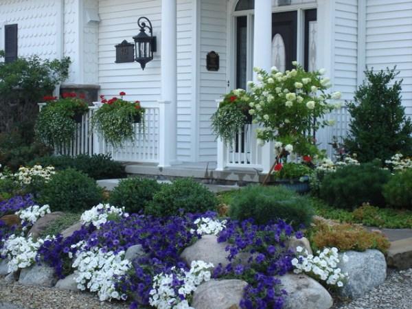 front yard landscapes - transitional