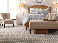 Residential Carpet Trends