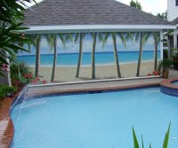 Outdoor Murals - Beach Style - Pool - Dallas - by Murals ...
