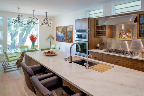 Chicago Net Positive Luxury Home