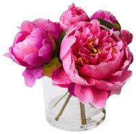 Fresh Cut Faux Peony - Traditional - Artificial Flower ...