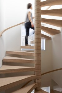 Oak Plywood Spiral Staircase - Contemporary - Staircase ...