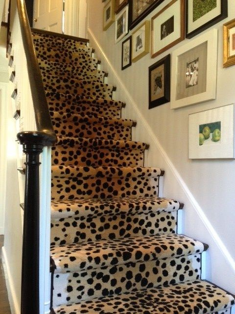 Staircase Wall Decorating Ideas Contemporary Staircase Other