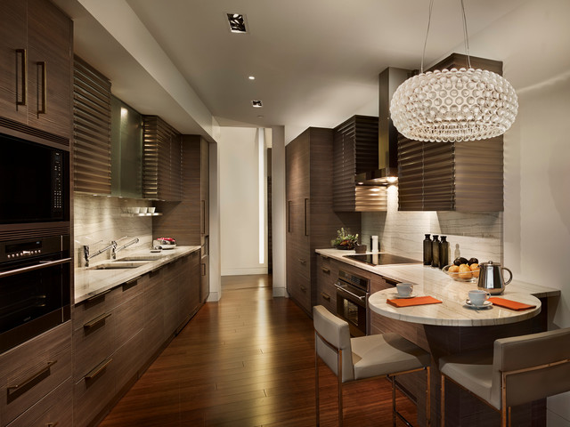 Modern Galley Kitchen  Contemporary  Kitchen