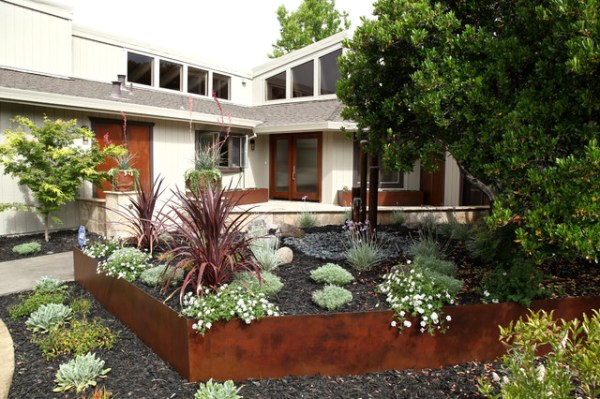 drought tolerant contemporary front