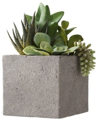 Threshold Faux Succulent Arrangement in Cement Pot