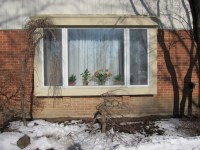 Front Windows Designs For Home