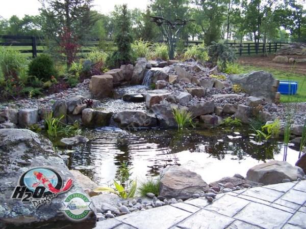 koi pond backyard & small
