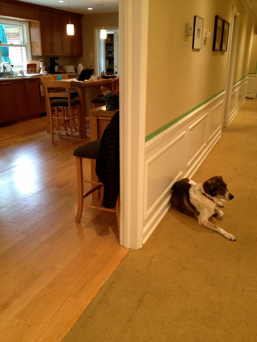 Can I Have Two Different Wood Floor Colors Adjacent To One
