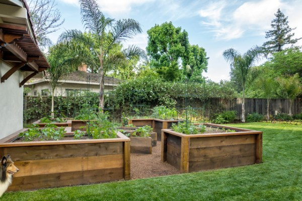 raised bed vegetable garden - traditional