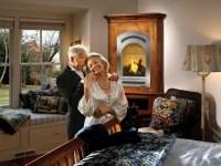 FireplaceX Bed & Breakfast 21 TRV GreenSmart Gas Fireplace ...