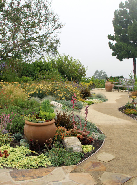 dry garden palos verdes - contemporary