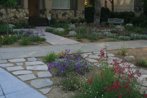 drought tolerant gardens - traditional
