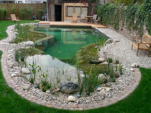 Резултат слика за yard natural pools