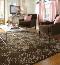 Area Rugs - Traditional - Living Room - Other - by Window ...