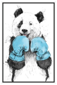 Boxing Panda Bear Wall Decal, The Winner by Balazs Solti ...