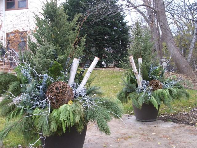 Winter Flower Pot Plants Flowers Ideas