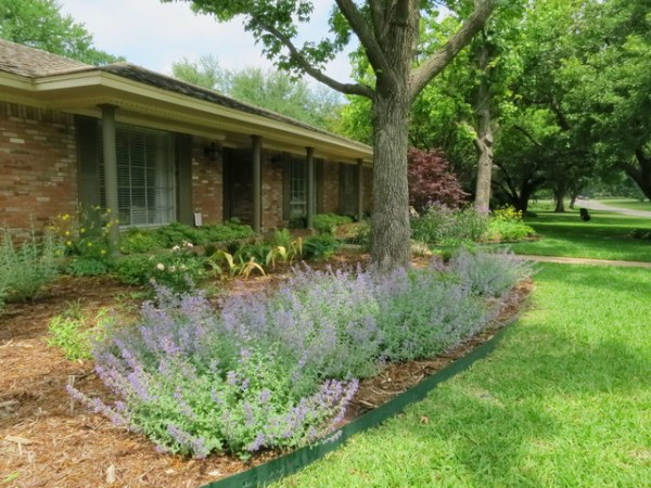 sustainable landscape - contemporary