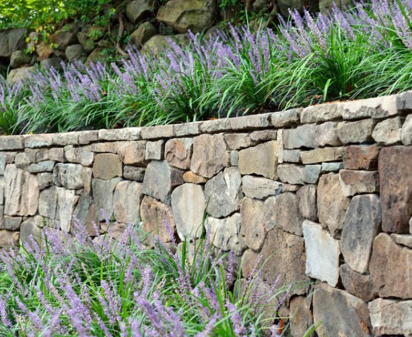 dry stack stone wall landscape