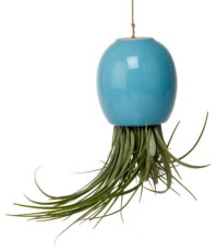 Airdrop Hanging Planter contemporary-indoor-pots-and-planters