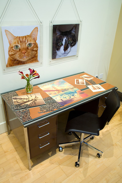 SOMA Loft - Desk and Pet portraits by Kimball Starr Interior Design contemporary