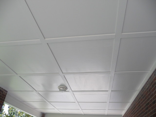 Patio Cover Ceiling Options  Patio  Houston  by