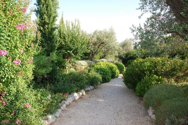 Oasi nel verde  Mediterraneo  Giardino  Altro  di Giardini Giordani