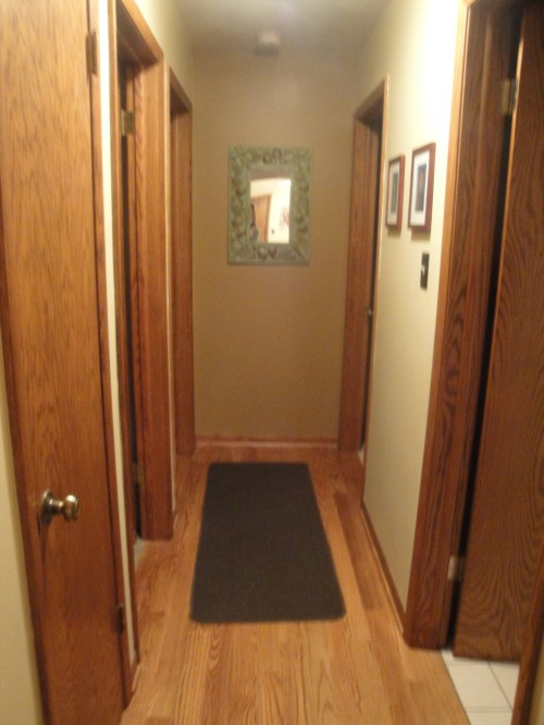 Any ideas to jazz up this dark narrow hallway with lots of