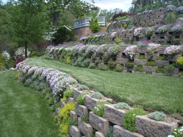 living walls - terraced garden