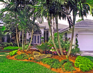 south florida landscaping - tropical