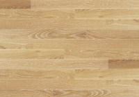 The gallery for --> Oak Wood Floor Texture