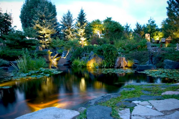 pond and landscape lighting - tropical
