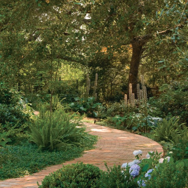 woodland path - traditional landscape