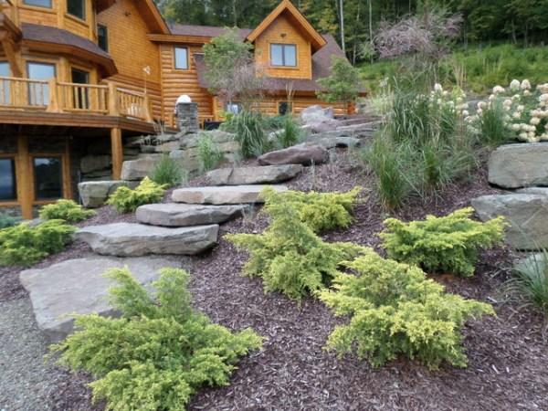 bonsai browning gardening