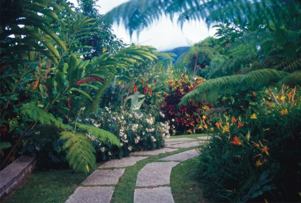 gardens of hawaii - tropical