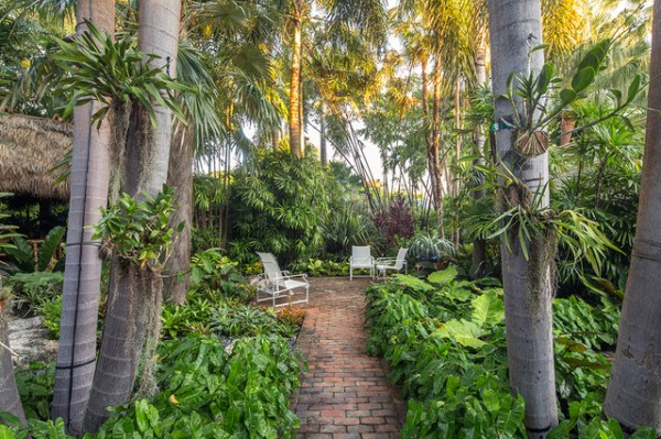 fred's garden - tropical landscape