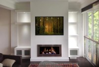 Chatswood Fire Place - Contemporary - Living Room - Sydney ...