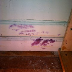 Cleaning Kitchen Wood Cabinets Glass Table Set Purple Mold On Wood, How To Clean