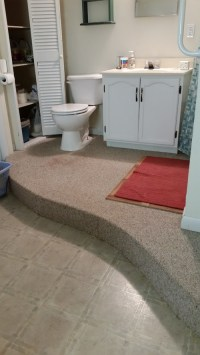 vinyl or tile for raised curved basement bathroom floor.