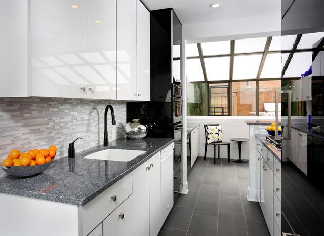 Modern Galley Kitchen Design Contemporary Kitchen Chicago