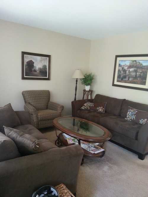 What Color Should I Paint My Living Room With Dark Brown