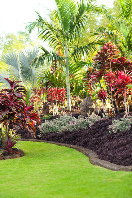 lotus ridge - tropical landscape
