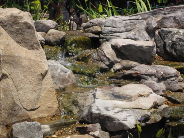 large koi pond with grey garden