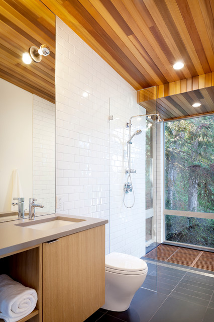 Herron Island Cabin Master Shower / Tub modern-bathroom