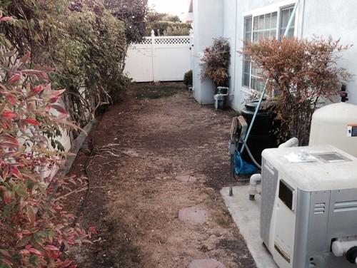 Help! Narrow Side Yard Landscape Ideas Needed!