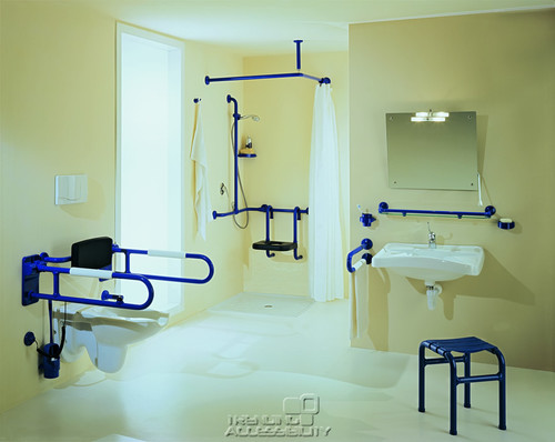 Grab Bars  Handrails in Bathrooms for Seniors or for All